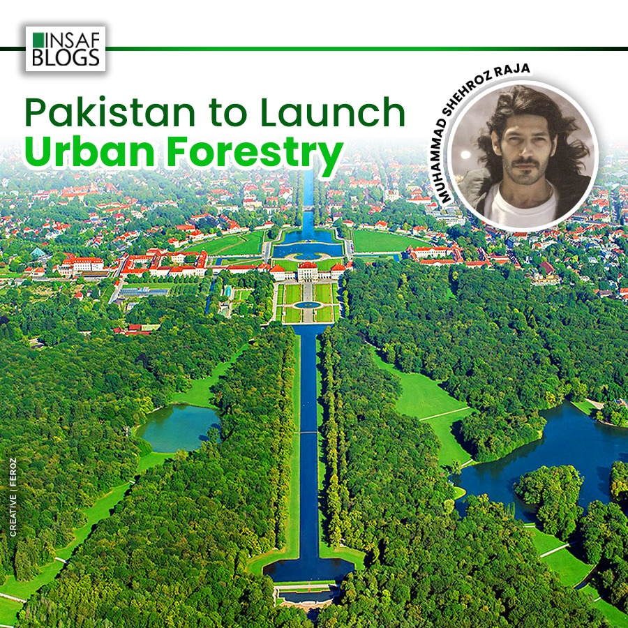 Urban Foresttry Pakistan - Insaf Blog.